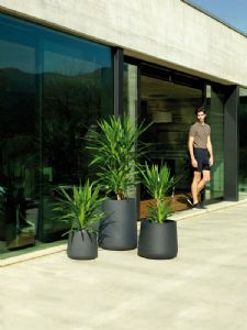 Beautiful curved contemporary planters online at potstore.co.uk